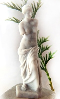 Venus miniature
